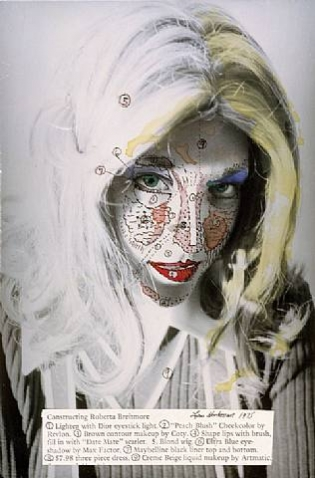 Identity Fix: The Double Talk of Lynn Hershman